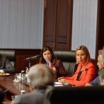 Seher Türkaslan – AB Yüksek Temsilcisi Federica Mahgerini ve Komisyon Üyesi Johannes Hahn TBMM ziyareti